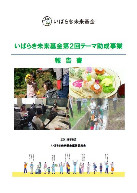 2theme-report.jpg